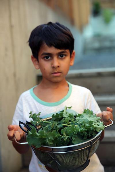 Kale Salad5